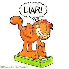 garfield liar