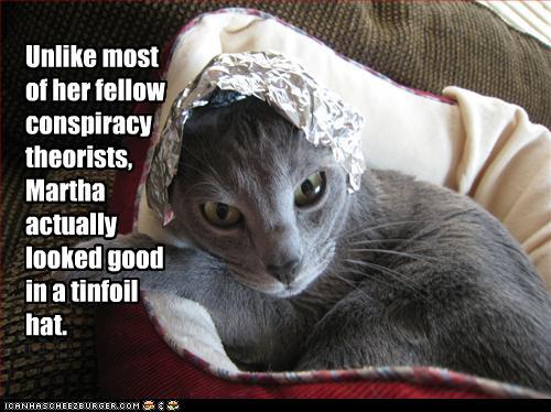 tinfoil cat