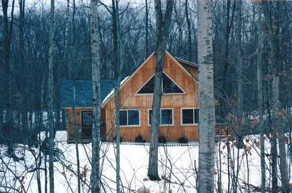 white birch clare michigan 2003-001