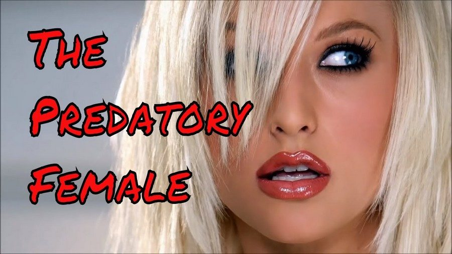 the predatory woman