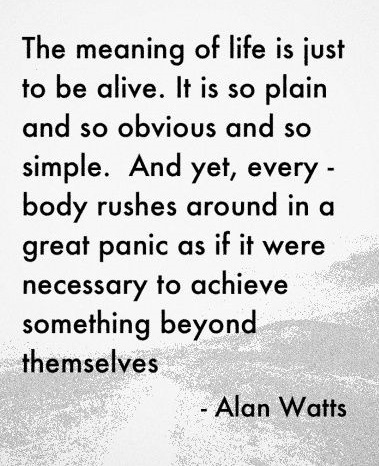 meaning of life alan watts